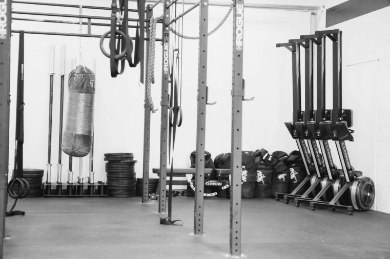 tribestrength gym barbells, weight lifting plates, boxing bag, sandbags, rowers, weight bench, gymnastic rings, climbing rope, ROGUE rig.